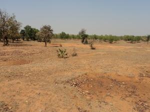 A Parched Land