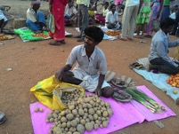 Dhokerjhara-selling his vegetables abundant